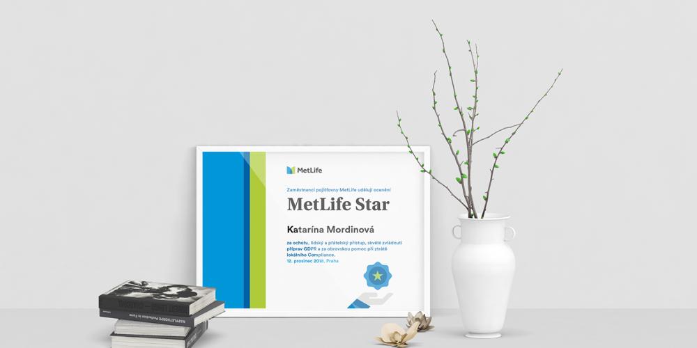 Dlouhodobá správa grafiky MetLife